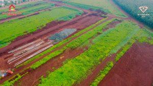 Dự án đang dần hoàn thiện công trình tuyến ống cấp nước TTTM Lộc Ninh 6